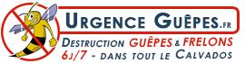 Urgence Guepes Calvados
